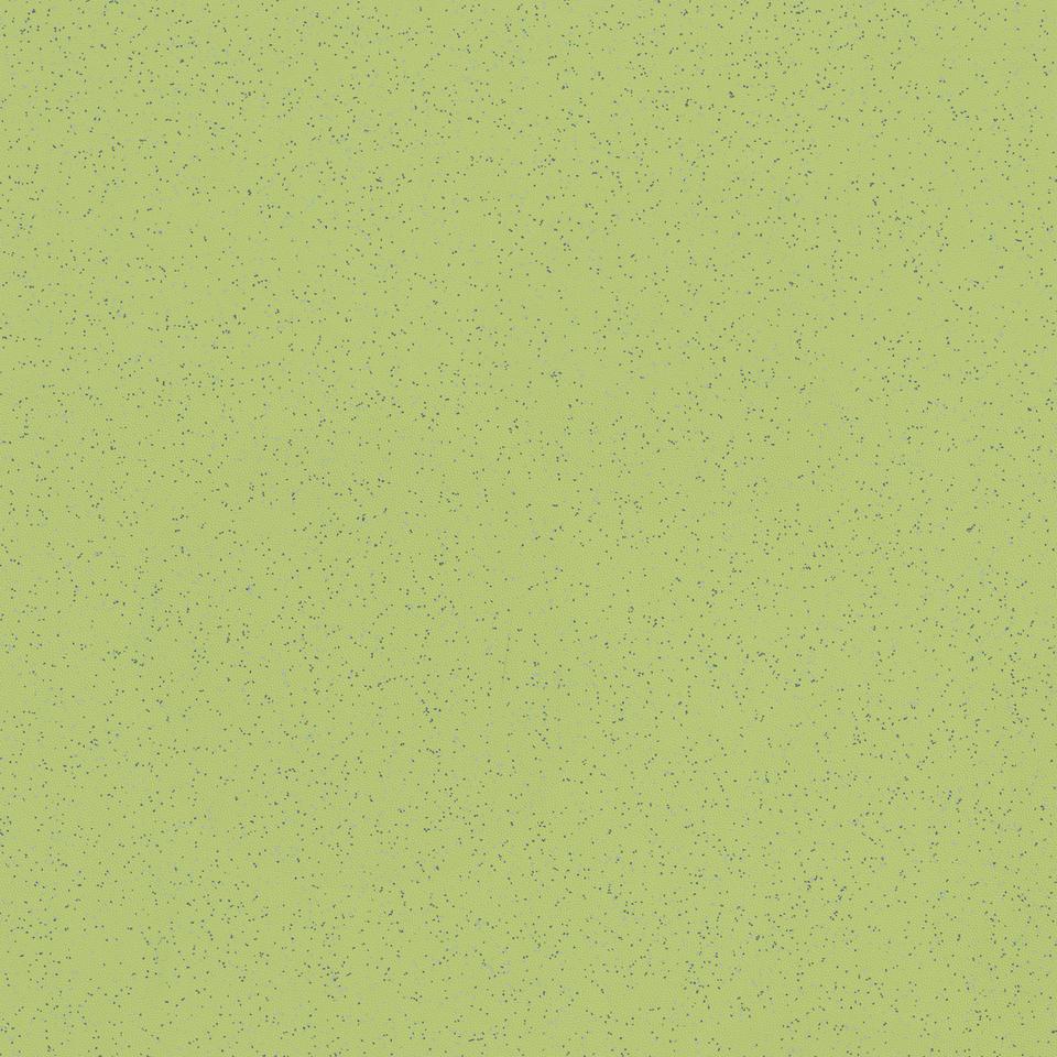 tapiflex platinium